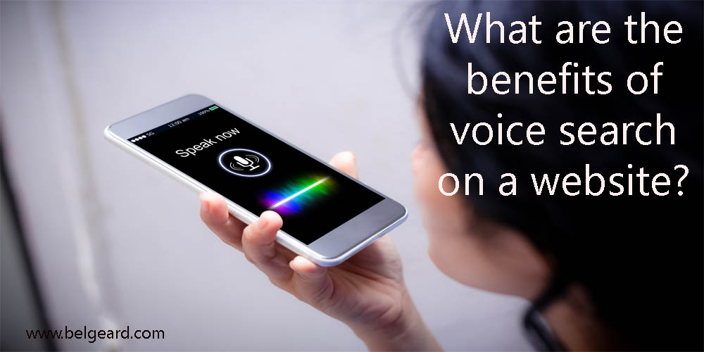 Add Voice Search in Your WordPress