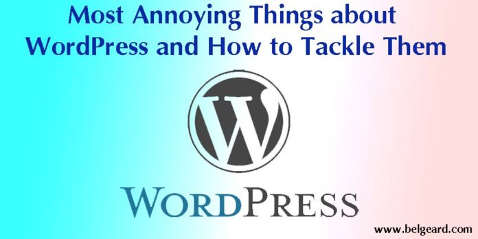 Most Annoying Things about WordPress and How to Tackle Them