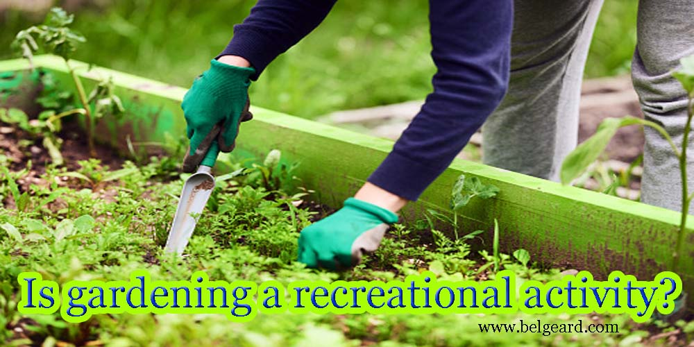Is gardening a recreational activity?