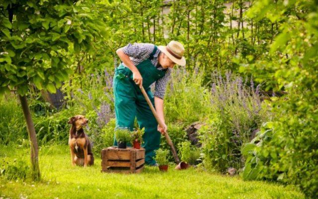 Aerobic Gardening