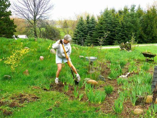 Gardening Tips During Pregnancy
