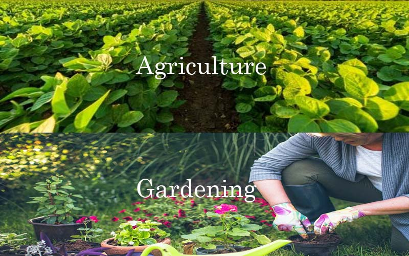 Gardening and Agriculture