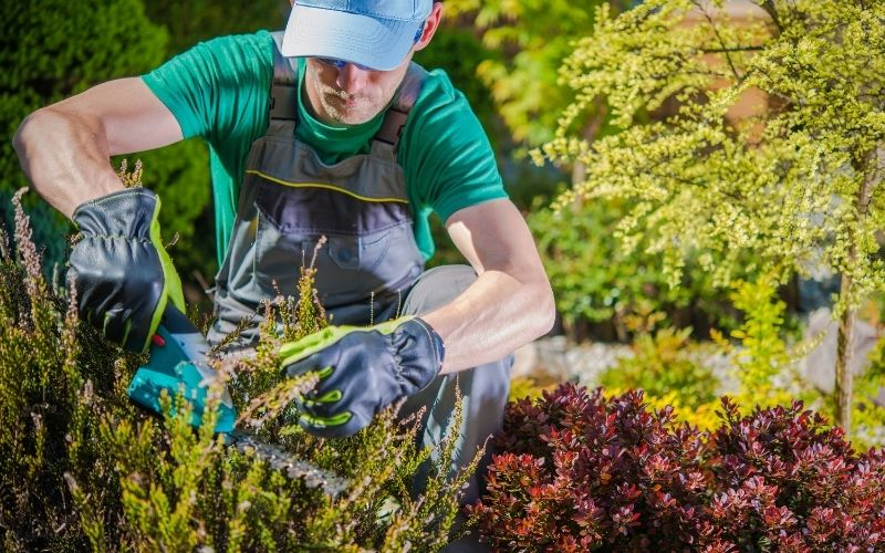 Is Gardening bad for the environment?
