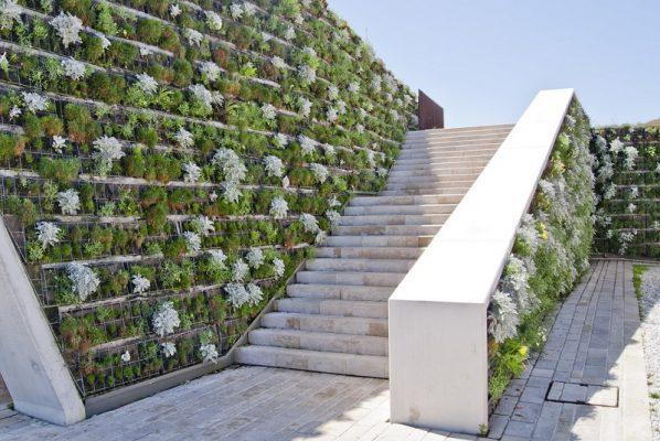 Vertical Wall Gardening