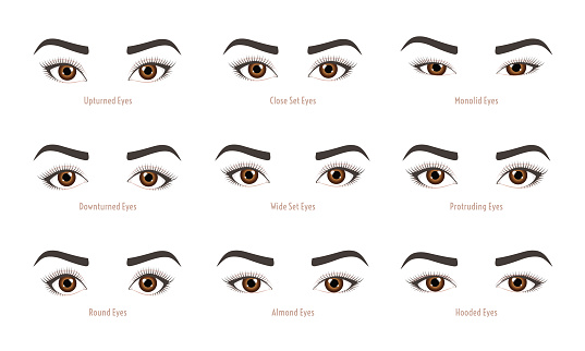 Different Eye shapes